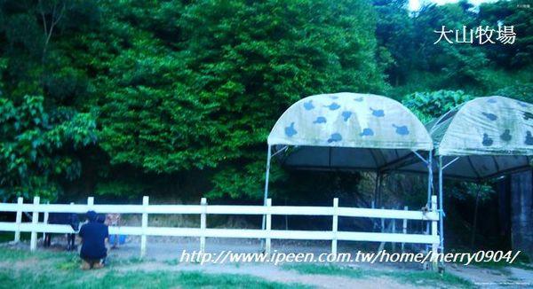大山休閒牧場:快樂逍遙牧場趣~~~大山牧場